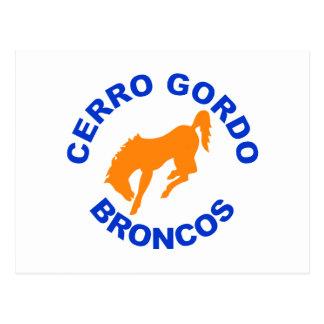 Caballo salvaje de Cerro Gordo Tarjetas Postales
