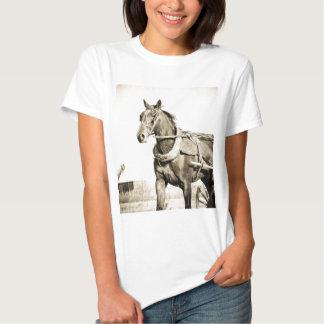 Caballo y cochecillo de Amish de la sepia Camisetas