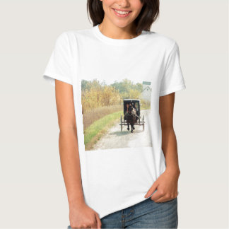 Caballo y cochecillo de Amish del otoño Camisetas