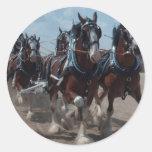 Caballos de Clydesdale Pegatinas Redondas