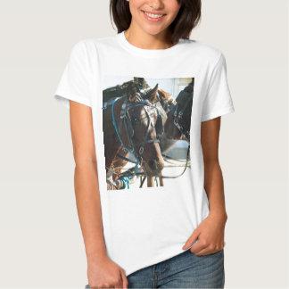 Caballos del cochecillo de Amish de la reunión en Camiseta