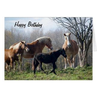 Caballos del feliz cumpleaños tarjeta de felicitación