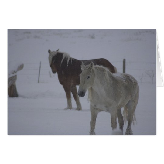 Caballos del invierno tarjeta de felicitación