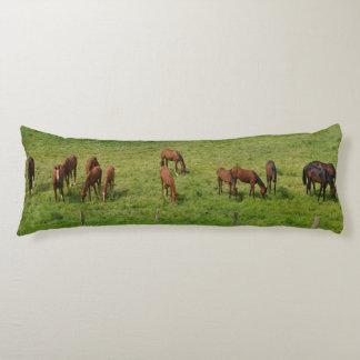 Caballos en pasto almohada de cuerpo entero