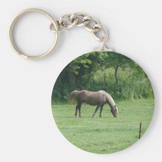 caballos llavero redondo tipo chapa