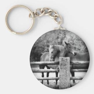 Caballos que abrazan - fotografía del amor del cab llavero redondo tipo chapa