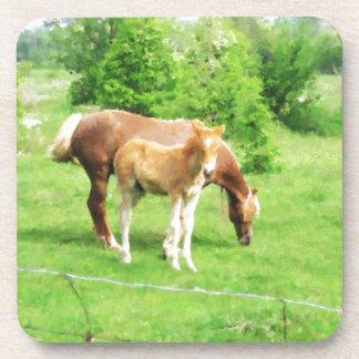 Caballos que se relajan en el campo posavasos