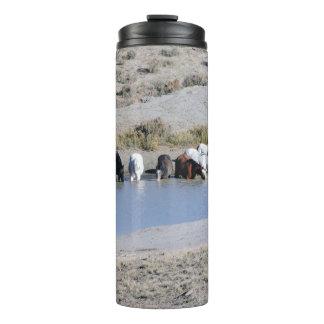 Caballos salvajes del lavabo de la arena, Colorado Termo Térmico