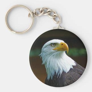 Cabeza 001 de Eagle calvo 02,1 rd Llavero