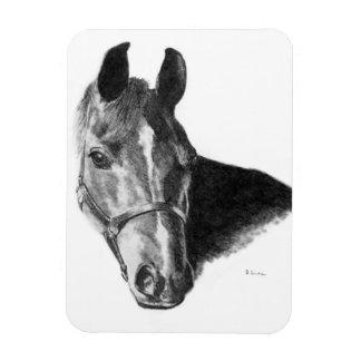 Cabeza de caballo del grafito iman de vinilo