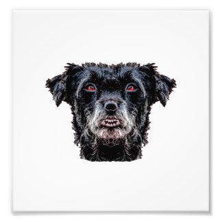 Cabeza de perro negro del demonio foto