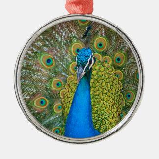 Cabeza del azul de pavo real con y plumas de cola adorno navideño redondo de metal