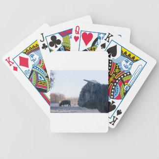 Cabeza del montañés escocés del toro negro con la baraja de cartas bicycle