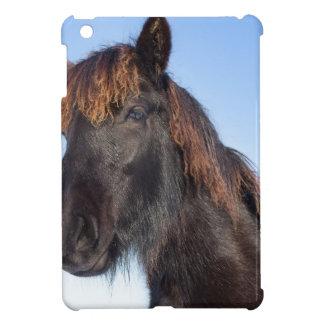 Cabeza del retrato del caballo negro del Frisian