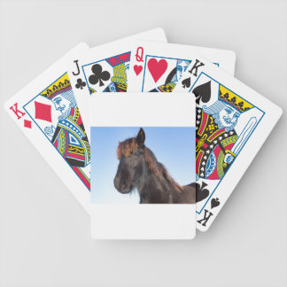 Cabeza del retrato del caballo negro del Frisian Baraja De Cartas Bicycle