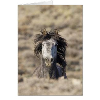 Cabeza en tarjeta de felicitación del caballo