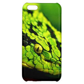 Cabeza verde de la serpiente de la raya negra