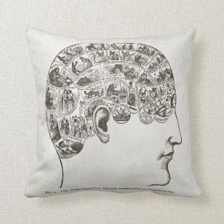 Cabeza y cerebro de la frenología de la almohada