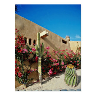 Cabo flores de San Lucas, Baja, México Postal