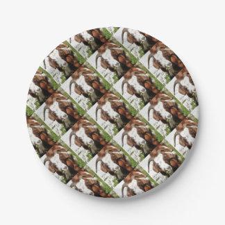 Cabra de cuernos que pasta plato de papel