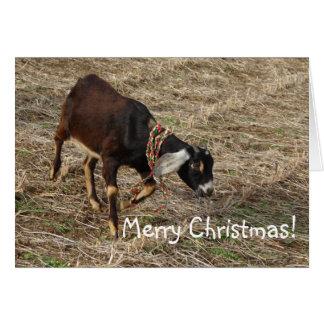 ¡Cabra de Nubian, Felices Navidad! Tarjeta