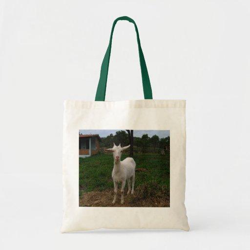 Cabra joven bolsas