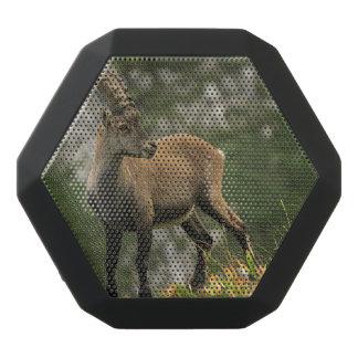 Cabra montés salvaje, o steinbock alpino, del altavoz negro con bluetooth