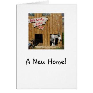 """Cabras """"de la nueva"""" casa que se calientan casera tarjeta"""