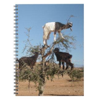 Cabras divertidas en un árbol libreta espiral