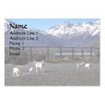 Cabras en pasto de rubíes de la montaña tarjetas de visita grandes