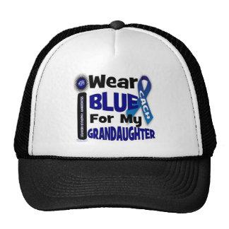cach_blue para el grandaughter gorros bordados