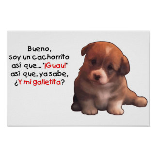 Cachorrito de la O N U de la soja Posters