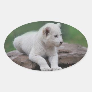 Cachorro de león blanco del bebé 2 pegatina ovalada