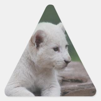 Cachorro de león blanco del bebé 2 pegatina triangular