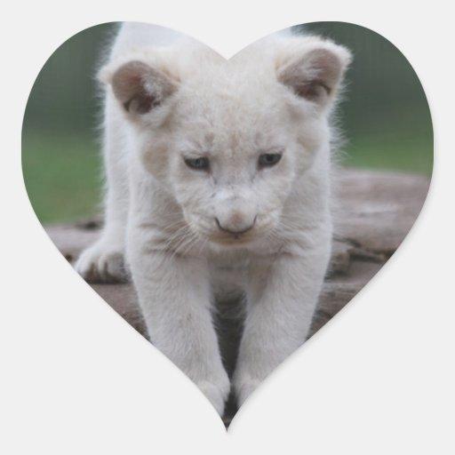 Cachorro de león blanco del bebé pegatinas de corazon