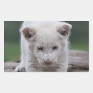 Cachorro de león blanco del bebé pegatina rectangular