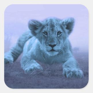 Cachorro de león lindo del bebé pegatina cuadrada