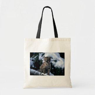 cachorro Puma-joven en árbol nevoso Bolsas