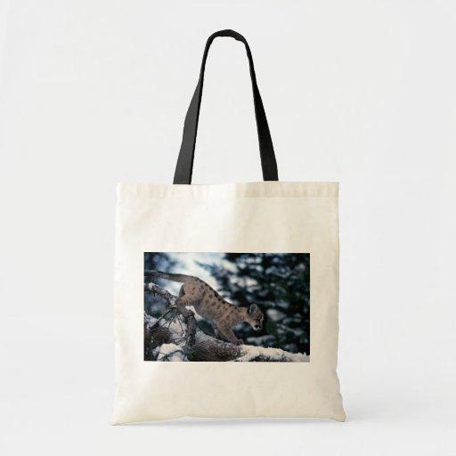 cachorro Puma-joven en árbol nevoso Bolsa De Mano