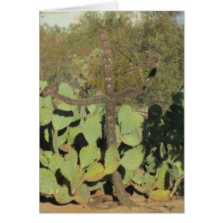Cactus cruciforme tarjeta pequeña