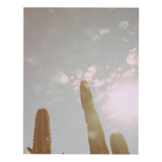 Cactus Cuadro