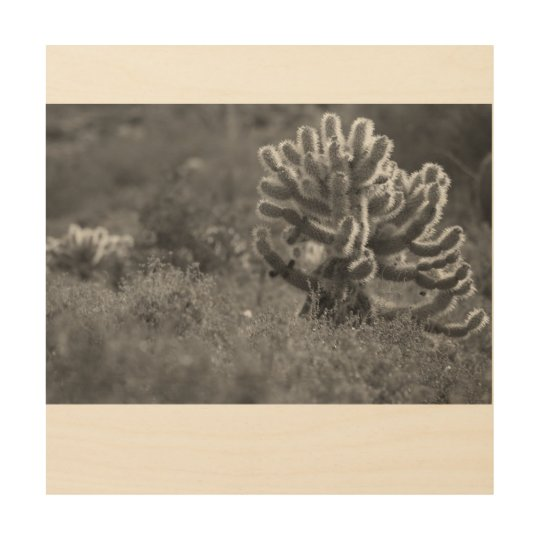 Cactus de Arizona Cholla Impresión En Madera