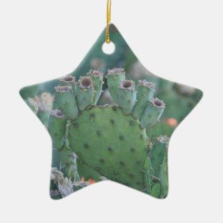 Adornos nopales for Cactus navideno