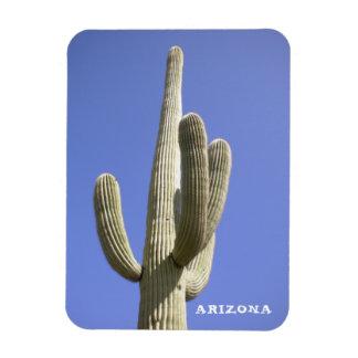 Cactus del Saguaro - Arizona - imán