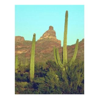 Cactus en las regiones más calientes folleto 21,6 x 28 cm