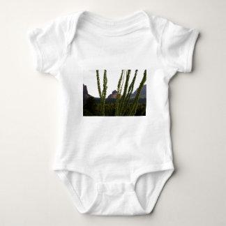 cactus sobre la roca de Bell Camisas