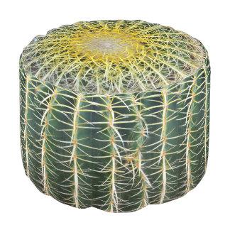Cactus tropical incómodo divertido pouf