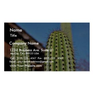 Cactus verde grande tarjetas de visita