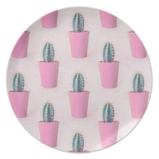 Cacuts en pote rosado plato