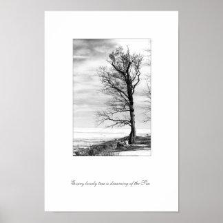 Cada árbol solo está soñando con el mar póster